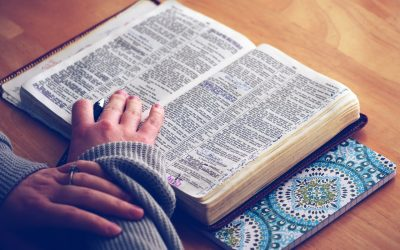 You and God's Word
