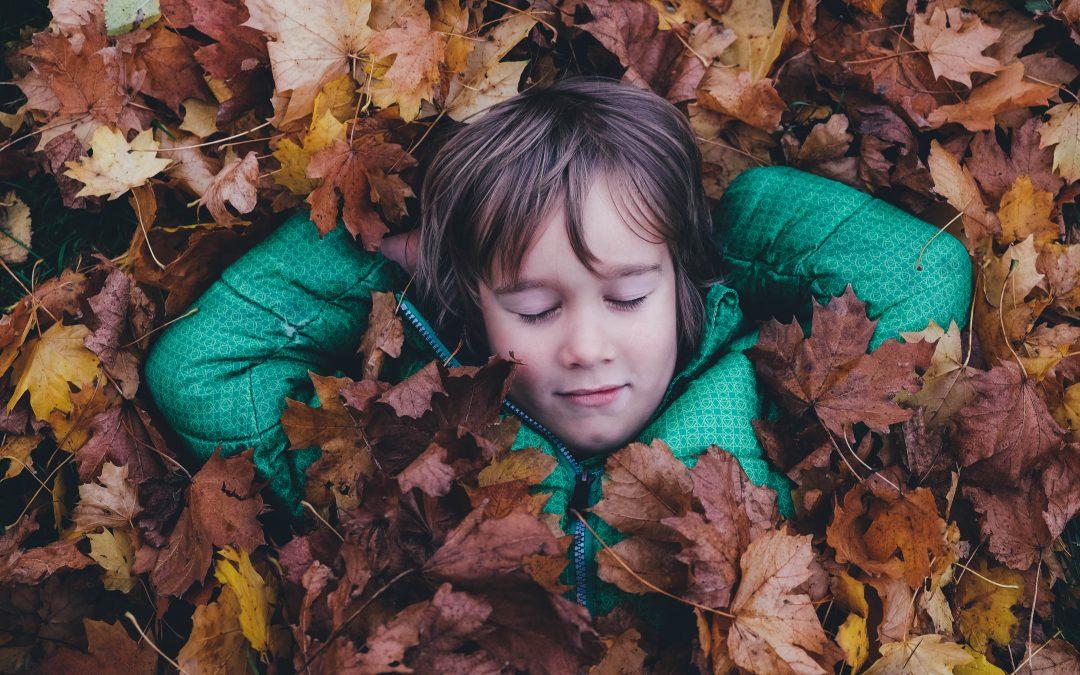 Happy Autumn to You